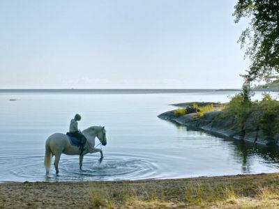 Innan vintern kommer - Pojke på häst